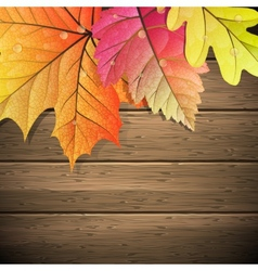 Autumn Leaves over wooden background EPS 10 vector image