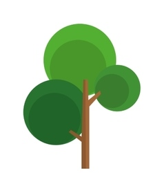 single tree with round foliage icon vector image