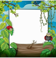 lady bug and a white board vector image