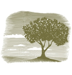 Woodcut tree landscape vignette vector