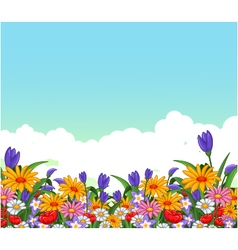 flowers garden for you design vector image