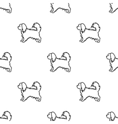 Pekingese icon in black style for web vector