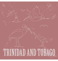 Trinidad and tobago national symbols scarlet red vector