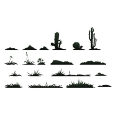 Black silhouettes of cactus on a white background vector