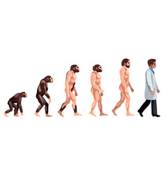 evolution of a doctor vector image