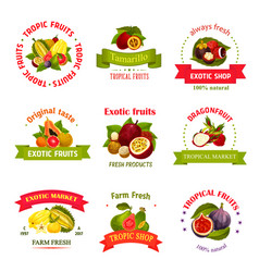 Exotic fruits icons for market or shop vector