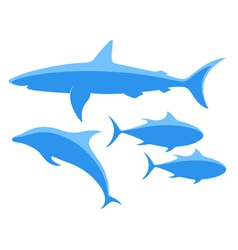 Shark tuna dolphin vector