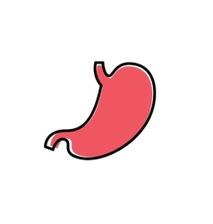 Flat human stomach icon vector