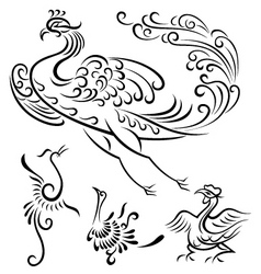 bird tattoo design vector image
