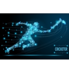 Cricket player poly vector