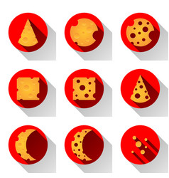 cheese flat icon with shadow vector image vector image