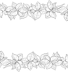 Hand drawn seamless border with foliage of rose vector