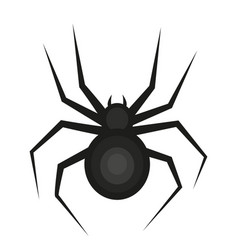 spider icon is a flat style isolated on white vector image vector image