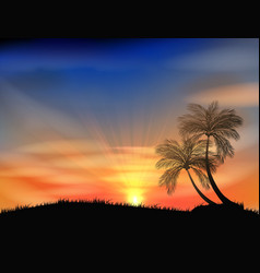 Sunset background with palm tree vector image