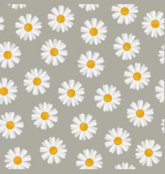 Daisy seamless pattern vector