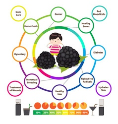Amazing health benefits of blackberries vector