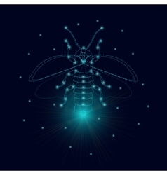 Luminous firefly icon vector