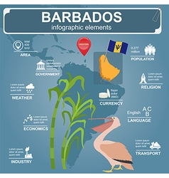 Barbados infographics statistical data sights vector image