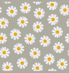 daisy seamless pattern vector image vector image