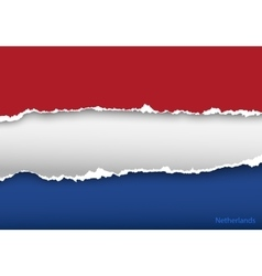 Design flag netherlands from torn papers with vector