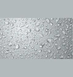 gray background of water drops vector image vector image