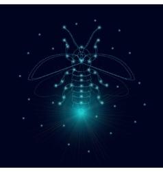 Luminous firefly icon vector