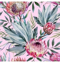 Tropical protea pattern vector