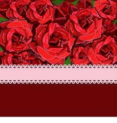 Floral background of red rose vector