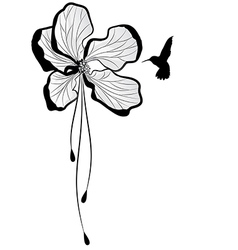 Apple flower and hummingbird vector