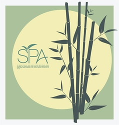 Bamboo for spa vector
