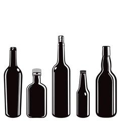 glass bottles vector image vector image