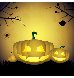 Halloween background with pumpkins and spider vector