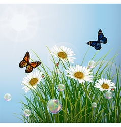 Tropical background with butterflies and flowers vector