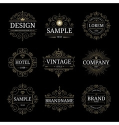 Set of vintage luxury logo templates vector
