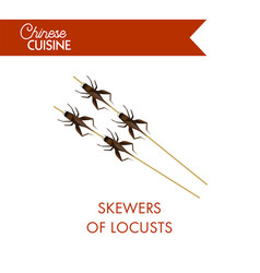 skewers of locusts on sticks isolated on white vector image