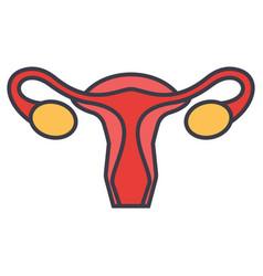 uterus female gynecology concept line vector image vector image
