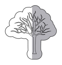 Figure bare oak tree icon vector
