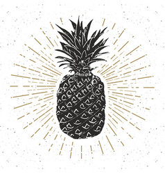 Vintage label hand drawn pineapple grunge vector