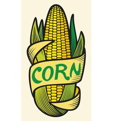 corn label vector image