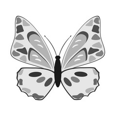 black and white butterfly on a white background vector image vector image