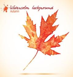 Orange watercolor leaves vector image vector image