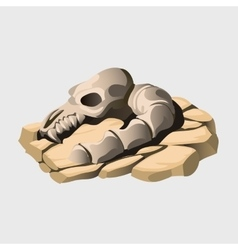 Skeleton of an ancient animal on the stone vector