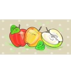 Apples retro art set vector image vector image