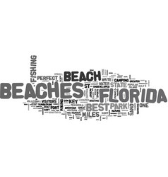Best beaches in florida text word cloud concept vector