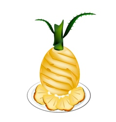 Delicious Fresh Pineapple on A White Background vector image vector image