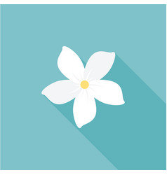jasmine flower icon with long shadow vector image vector image