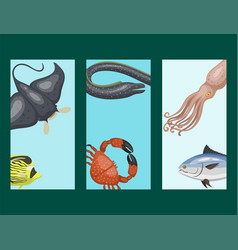 Set of different types of sea animals cards vector