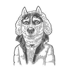 Dog sportsman in glasses and jacket vintage black vector