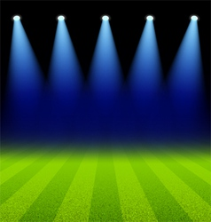 Bright spotlights illuminated green soccer field vector image