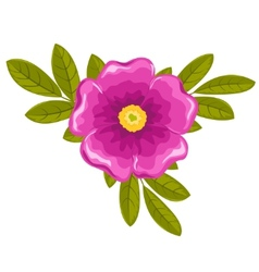 dogrose flower and leaves vector image vector image